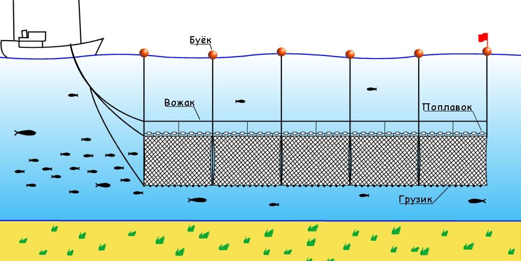 участок водоема специально оборудованный для ловли рыбы неводом