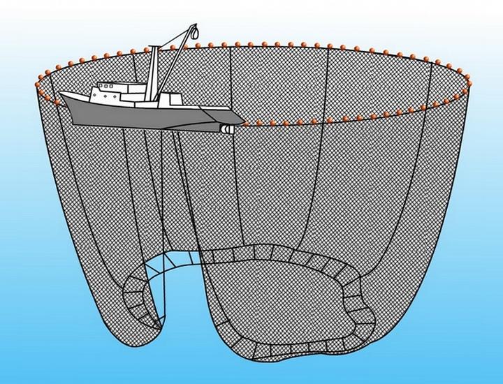 как называется сеть для ловли рыбы с судов